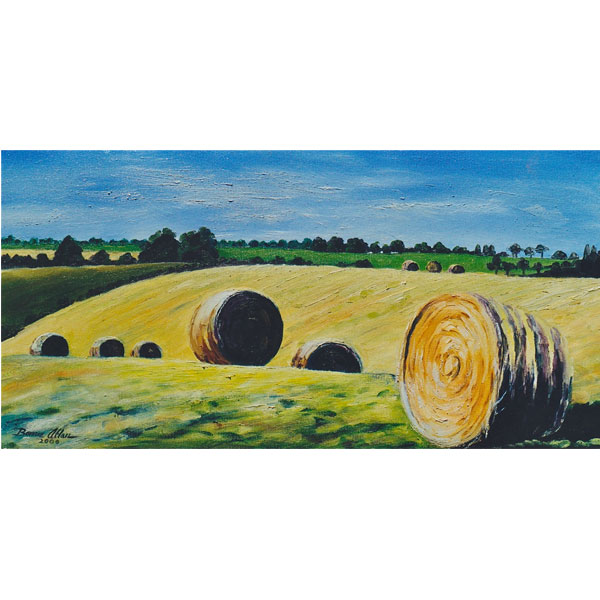 Hay Rolls with Shadows 20x40cm- SOLD
