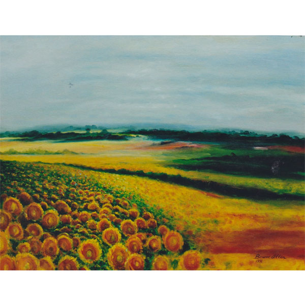 Sunlit Sunflowers 61x51cm - SOLD
