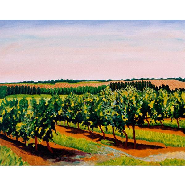 Sunlit Vines 76x61cm- SOLD