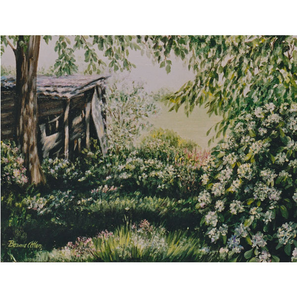 Old Wooden Shed 36x26cm- SOLD